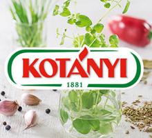 kotanyi_partner